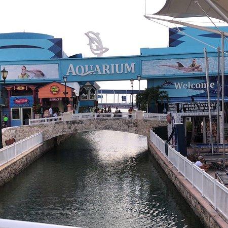 La Isla Shopping Village Resmi