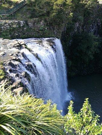 Whangarei Falls Φωτογραφία