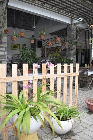 Quang Nam Province, Vietnam: garden view