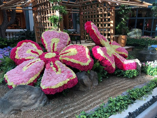 Bellagio Conservatory & Botanical Garden: You gotta see it in person.