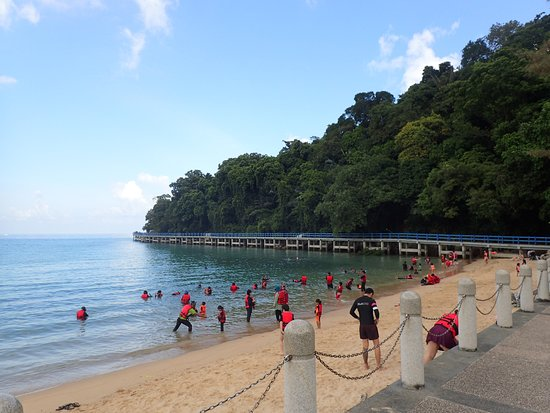 Aman Tioman Beach Resort Sdn Bhd Updated 2018 Reviews