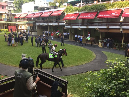 Port Louis Race Track: behind the scenes