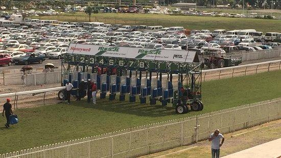 Port Louis Race Track: starting block