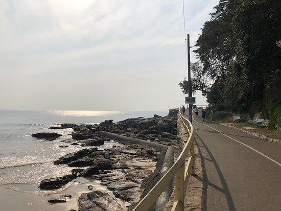 Manly Scenic Walkway: Manly-Shelly Beach walking path