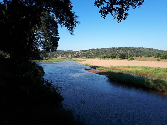 Limpopo Province, South Africa: On the banks of the Levhuvhu river.