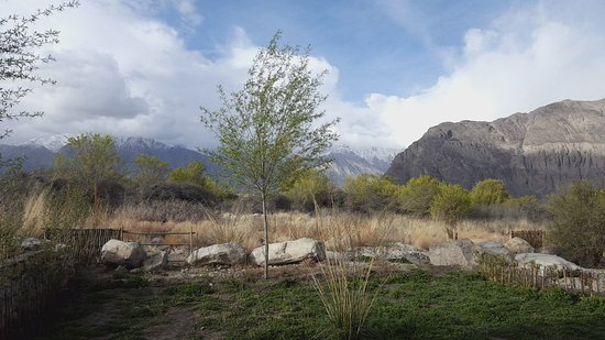Nubra Valley, Indien: 20180509_071846_large.jpg