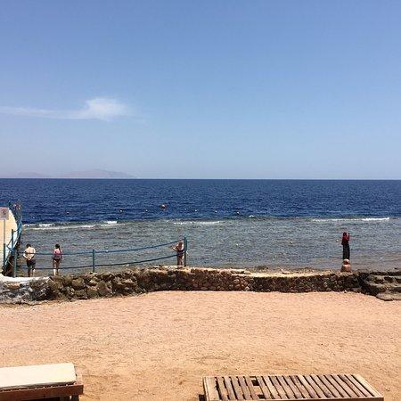 Shores Aloha Resort: Wonderful see view