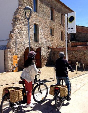 La Granadella, สเปน: Podrás alquilar hasta 4 burricletas en nuestro establo