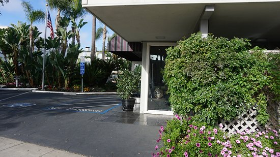 La Avenida Inn: Zugang