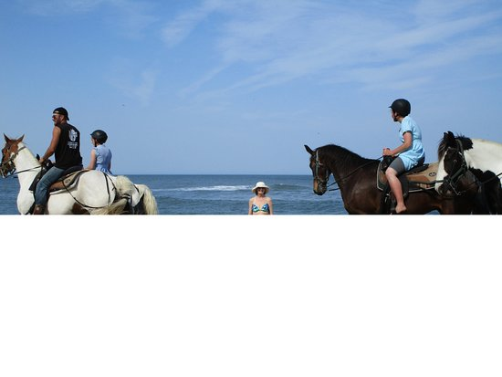 Fairfield Inn & Suites by Marriott Virginia Beach Oceanfront: See & ride horses on the beach.