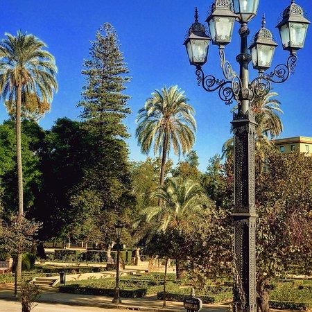 Parque de Maria Luisa: Magique