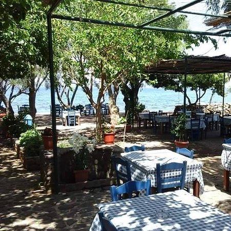Skala Sikamineas, Greece: ΤΡΑΠΕΖΑΚΙΑ ΚΑΤΩ ΑΠΟ ΤΗΝ ΣΚΙΑ ΤΩΝ ΔΕΝΔΡΩΝ