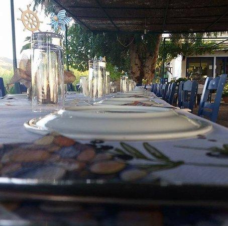 Skala Sikamineas, Greece: Ο ΧΟΡΟΣ ΜΑΣ ΜΠΟΡΕΙ ΝΑ ΚΑΛΥΨΗ ΚΑ8Ε ΚΟΙΝΩΝΙΚΗ ΕΚΔΗΛΩΣΗ