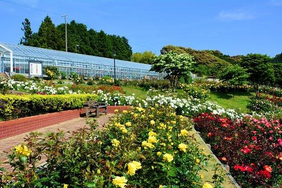 Shimada City Baranooka Park