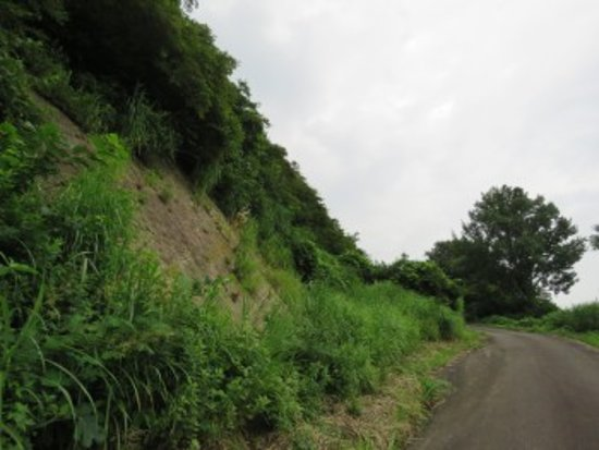 Myoko, Giappone: 漣痕露頭