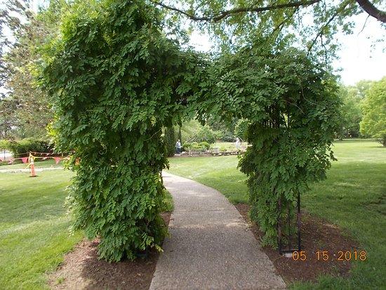Shelter Gardens: Entrance