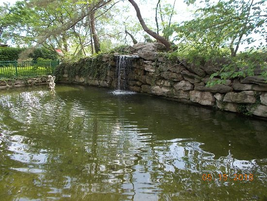 Shelter Gardens: Waterfall and pond