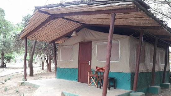 Safari in Kenya Con Samba: Sentrim Camp Tsavo East