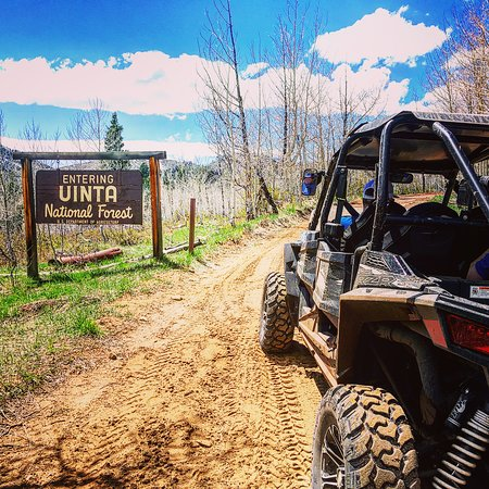Heber City, UT: Beautiful Day on a RZR 4