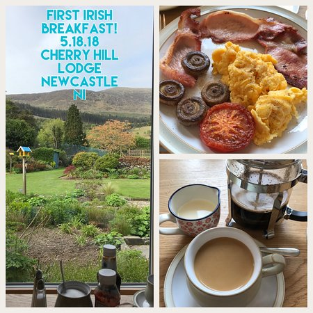 Cherryhill Lodge: Full Irish with the view from the breakfast table