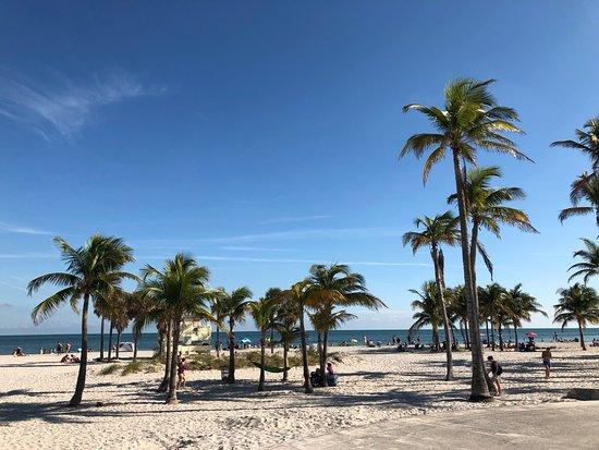 Crandon Park Beach: Crandon Beach