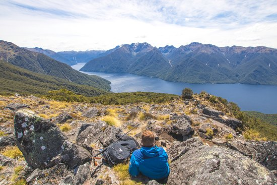 Fiordland Outdoors Co.