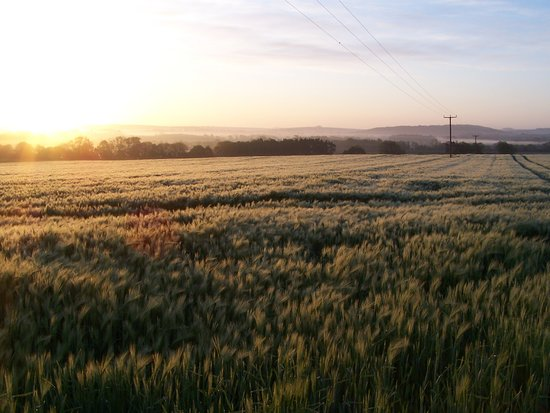 Burythorpe, UK: If your up at 05.00 am, who knows
