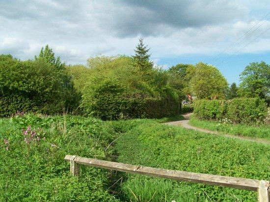 Burythorpe, UK: Kennythorpe 2 minutes walk down the road