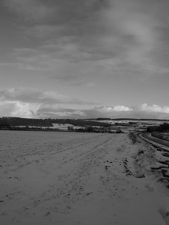 Burythorpe, UK: Even in Winter, Gods own Country is beautiful