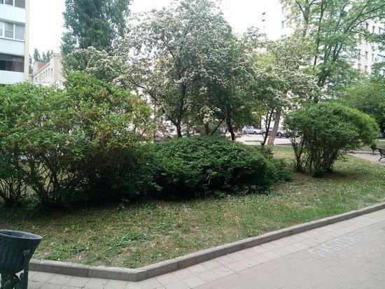 Pushkin Street (Pushkinskaya ulitsa): Пушкинская улица (Пушкинский бульвар)