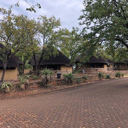 Olifants Rest Camp: photo2.jpg
