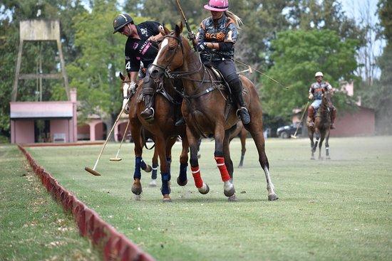 Polo in Buenos Aires: polo practice