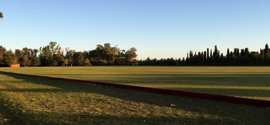 Polo in Buenos Aires: The best moment