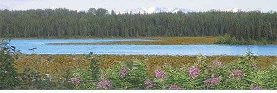 Kasilof, AK: View of Johnson Lake across from the park.