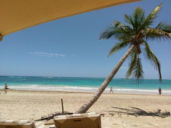 VIK Hotel Cayena Beach: IMAG1251_large.jpg