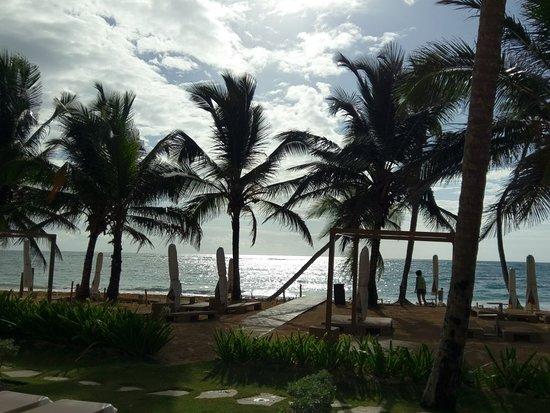 VIK Hotel Cayena Beach: IMAG1250_large.jpg