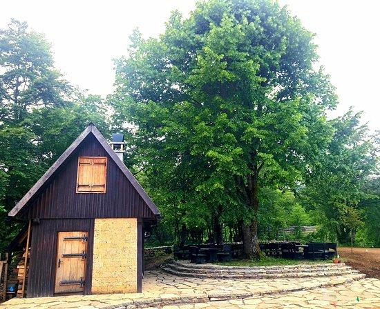 Plitvicka Jezera Photo