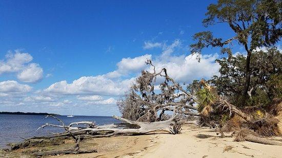 Cumberland Island, Géorgie: Untouched