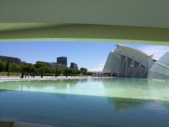 Zdjęcie The park and the City Valencia Ninebot by Segway Tour
