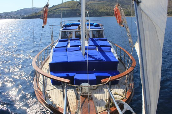 Unicorn Boat Trips