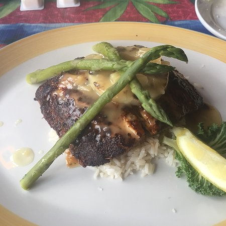 Marco Island Snook Inn Menu