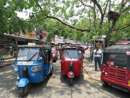 Around Sri Lanka: Tuk Tuks everywhere!