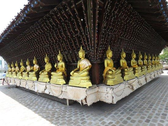 Around Sri Lanka: Seema Malaka