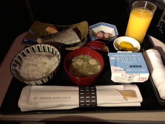 Japan Airlines (JAL): My snack before sleeping