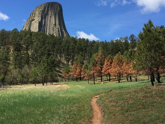Devils Tower, WY: Red Beds Trail