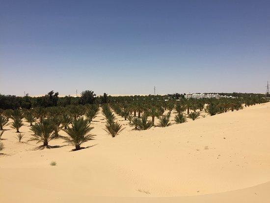 El Oued照片