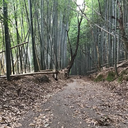 Mt. Takatsumi