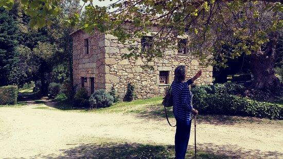 Quinta do Pinheiro: Outra hospedagem