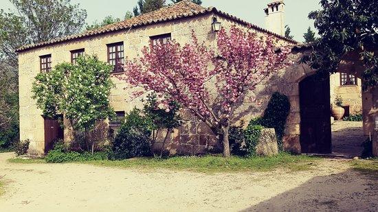 Quinta do Pinheiro: Lateral da casa principal