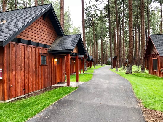 Five Pine Lodge & Spa: Cabins and main buildings are connected via paved walkways.